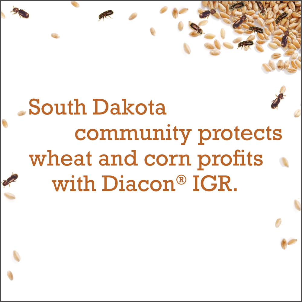 South Dakota community protects wheat and corn profits with Diacon IGR.